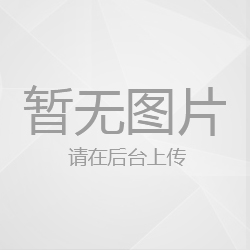 张家港市新精工轴承机电有限公司